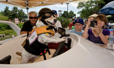 Duma, Chicago's own boat driving dog was at Dadfest 2012 at Willow Creek Community Church.